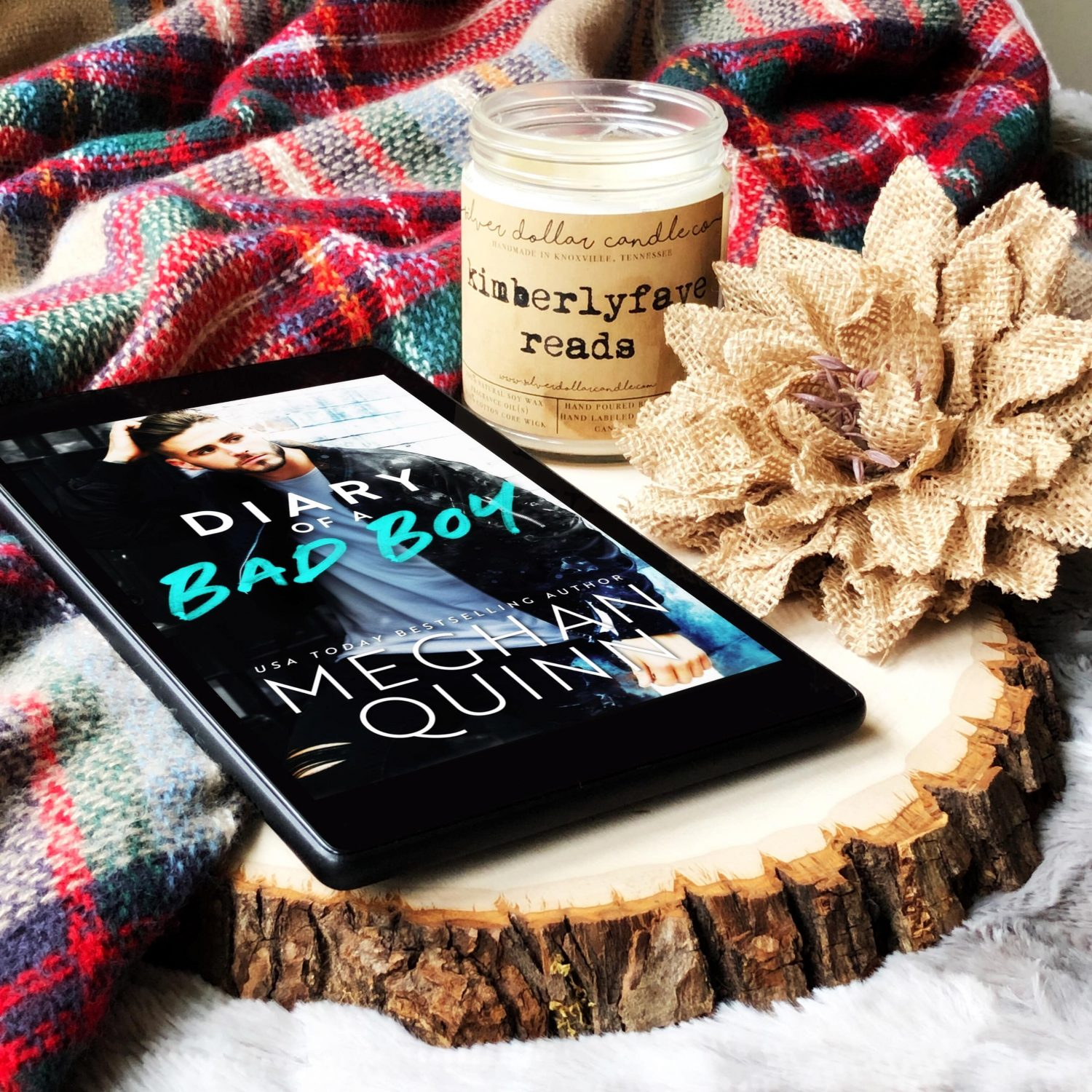 In Review: Diary of a Bad Boy by Meghan Quinn