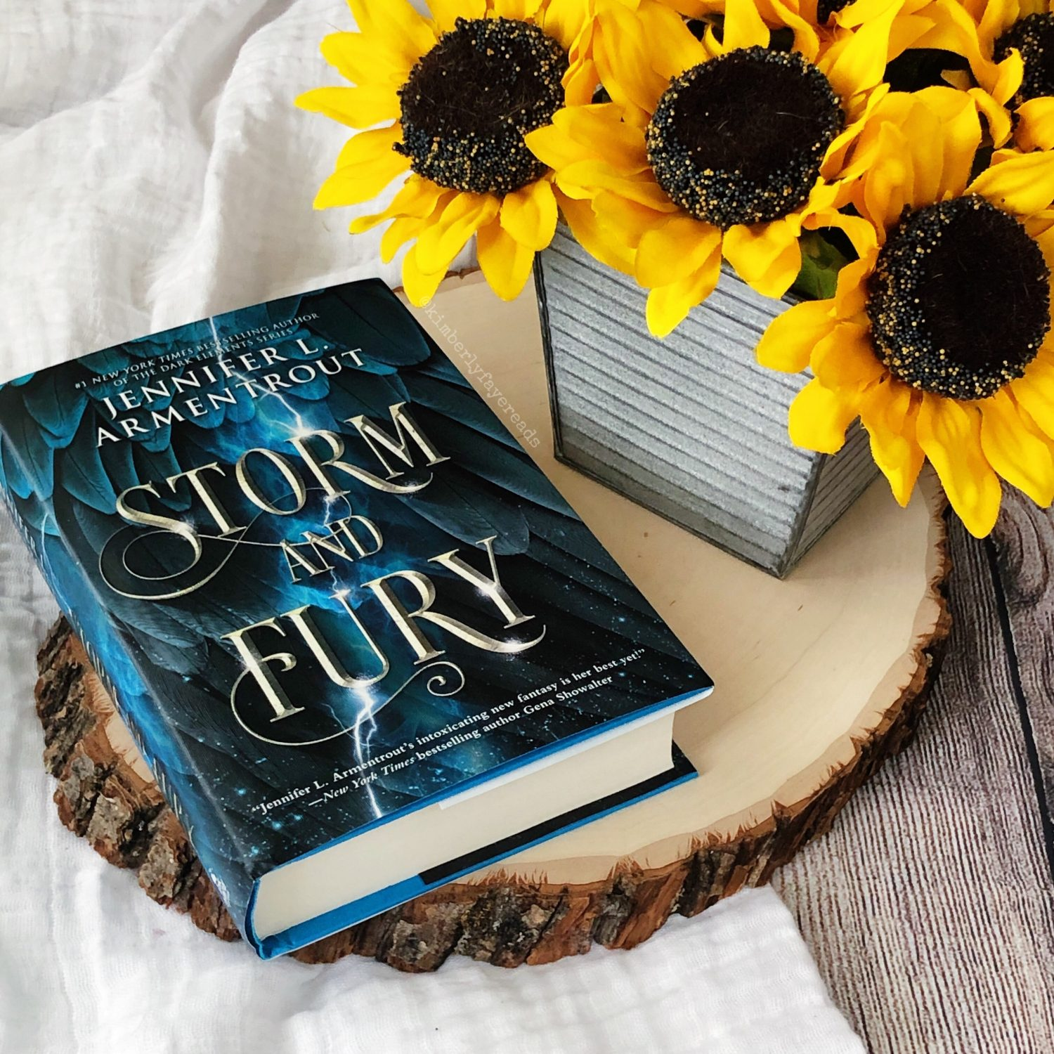 In Review: Storm and Fury (The Harbinger #1) by Jennifer L. Armentrout